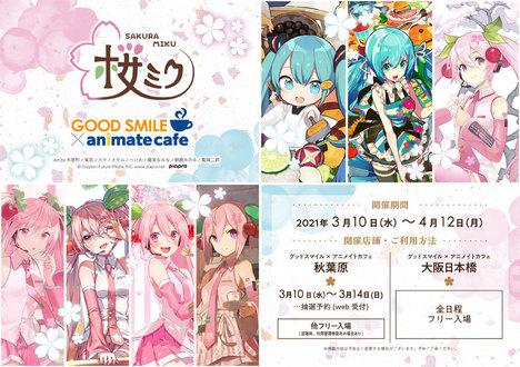 8c20ea71-sakuramiku_2021_pop_banner_a4.jpg